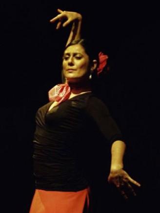 Le flamenco à l'honneur dans le théâtre de verdure à la Roseraie