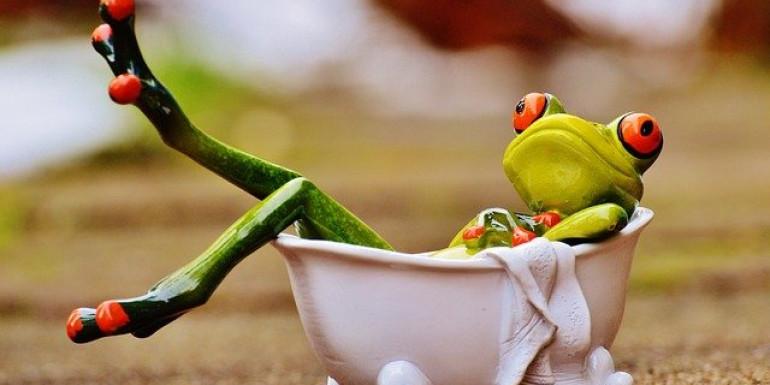 Frog bath Image par Alexas_Fotos de Pixabay/Boire, cuisiner, se laver : RDV avec la qualité de l'eau