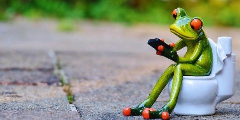 Eloigner les déjections, un défi majeur pour l'humanité. Alexas Fotos de Pixabay/