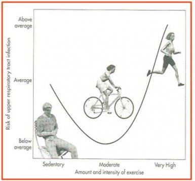 Modèle en forme de J de la relation entre les différentes quantités d'exercice et le risque d'infection des voies respiratoires supérieures (IVRS) illustrée par le Dr KOULMANN (1)