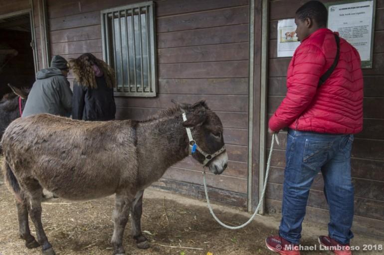 Les jeunes  sont accueillis à la ferme des Meuniers