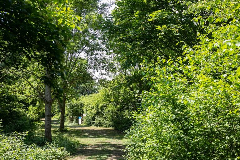 Espace naturel de la Pierre-Fitte, crédit photo : M. Génon