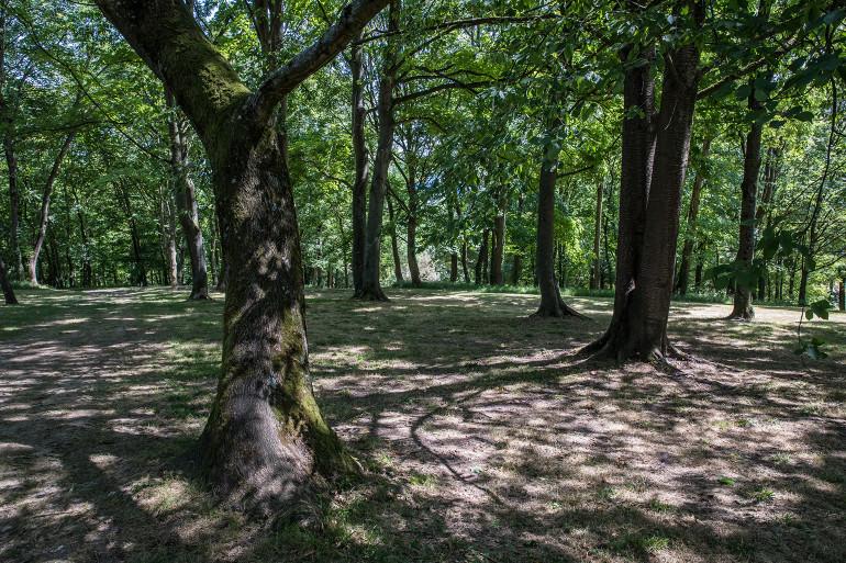 Parc départemental du Morbras à Bonneuil-sur-Marne ; crédit photo : Eric Legrand