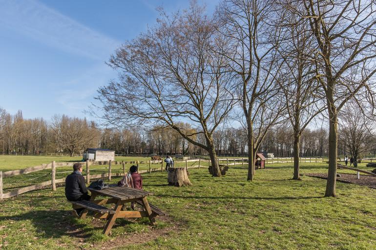 Parc départemental de la Plaine des Bordes ; crédit photo : E. Legrand