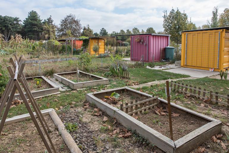 Jardins familiaux et culture potagère au parc des Lilas à Vitry-sur-Seine ; crédit photo : E. Legrand