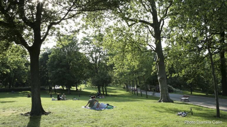 Le Parc Du Rancy