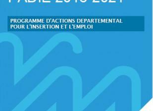 Programme d'actions Départemental pour l'insertion et l'emploi
