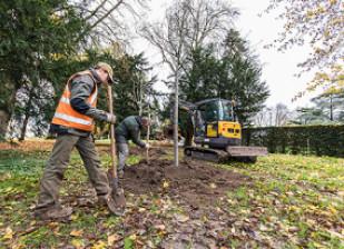 Des agents départementaux plantent des jeunes arbres dans le parc départemental de la Roseraie