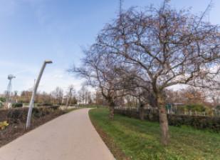 aménagements 2020 parc départemental des Hautes-Bruyères