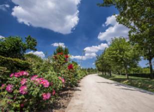 Parc des Hautes-Bruyères ; crédit photo : Eric Legrand