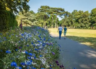 Balade au parc de la Roseraie ; crédit photo : E. Legrand