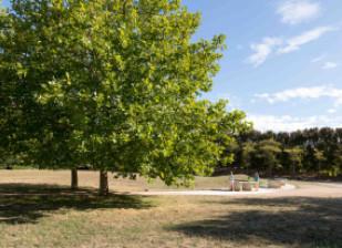 Vue du parc du Champ Saint-Julien ; crédit photo : Djamila Calin
