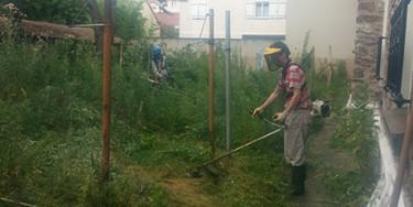 Entretien des espaces verts lors des chantiers éducatifs.