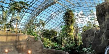 Le bassin des lamantins est situé dans la grande serre du zoo.