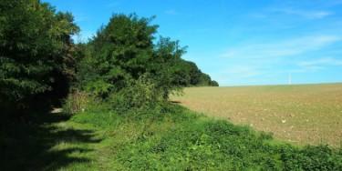 Tégéval : promenade exploratoire, du proche au lointain