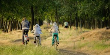 Balade à vélo en famille au cœur du massif de l'Arc Boisé