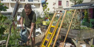 """Jardin partagé """"Jardin de la cité Fabien"""" à Bonneuil-sur-Marne ; crédit photo : M. Lumbroso"""