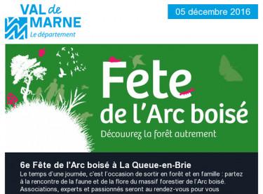 Arc boisé / Paix / Rio 2016 / Egalité Femmes/Hommes / Aide