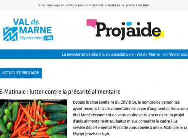 """News Proj'aide 137 E-Matinale """"Lutter contre la précarité alimentaire"""", vote à distance, témoignage LHF Espoir, dispositif ESS"""